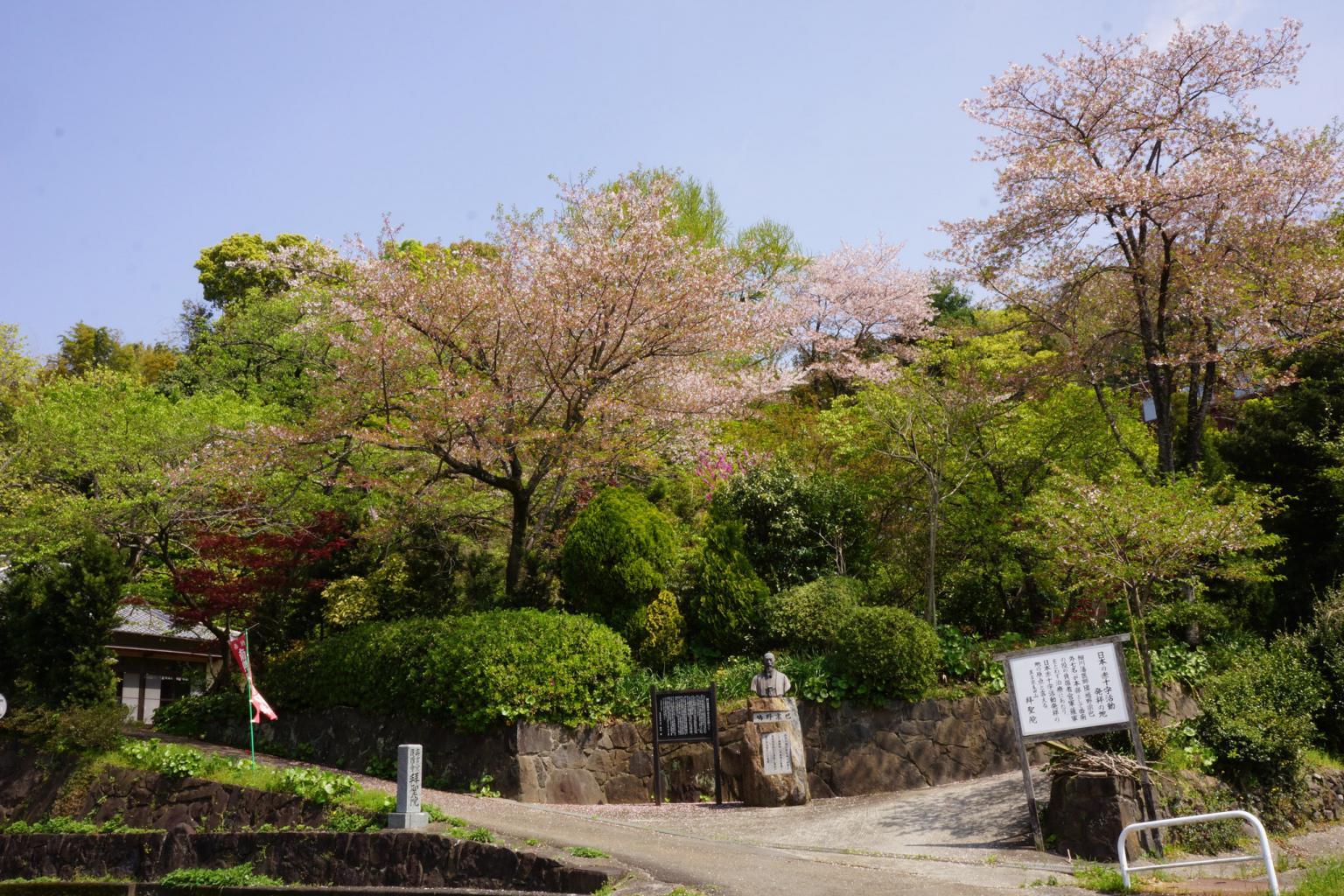 拝聖院 | 観光地 | 熊本市観光ガイド