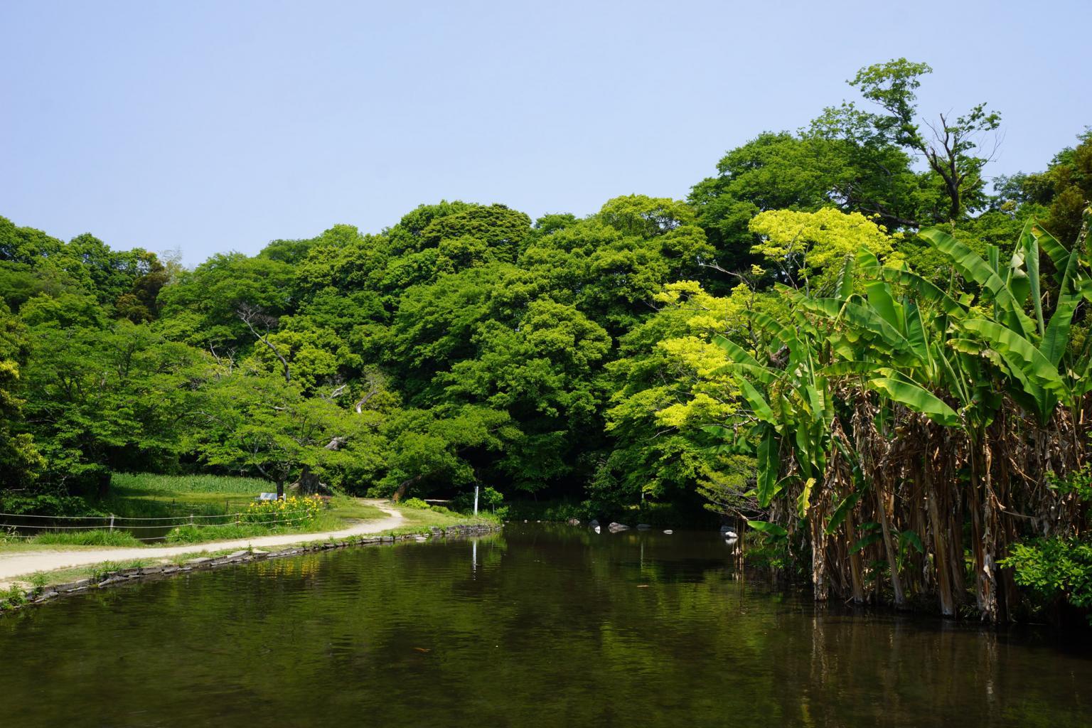 八景水谷公園 | 観光地 | 熊本市...